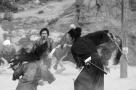 Sword of the dead, Masami